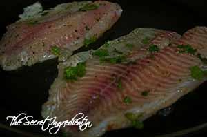 PanGrilledFish11