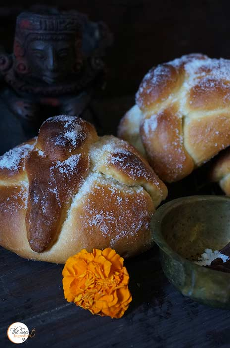 pandemuerto_featured6
